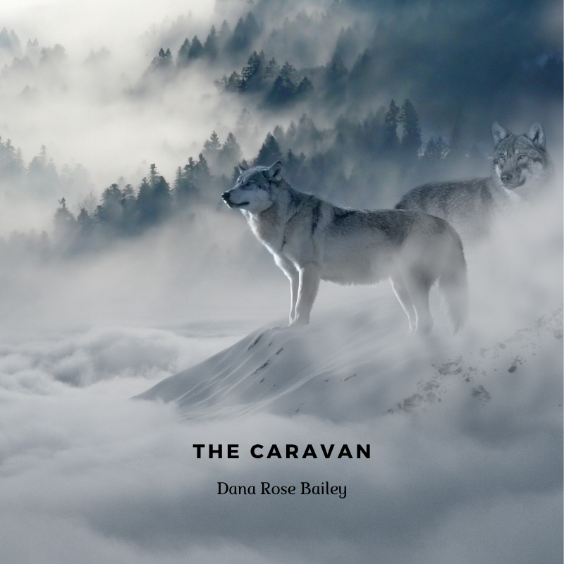 The Caravan cover, wolves in snowy forest mountain area